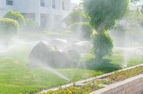 Aménagement extérieur des espaces verts sur Genève